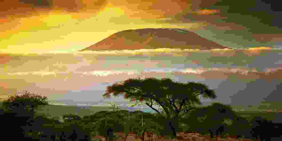 Kilimanjaro Photography